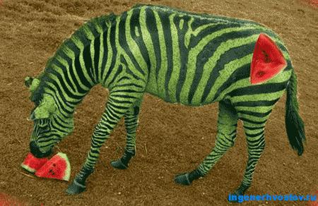 Как вырезать объект в Фотошопе (Photoshop)