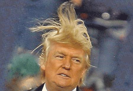 Волосы Дональда Трампа