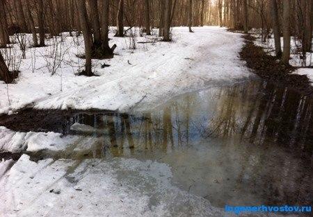 вода на лыжне