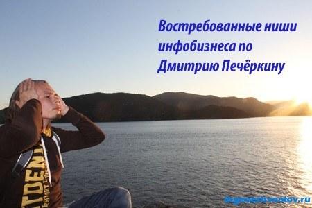 Ниши инфобизнеса, востребованные в Рунете. 8-ой вопрос к Дмитрию Печёркину