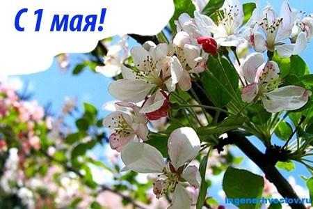 С праздником 1 мая и итоги конкурса комментаторов