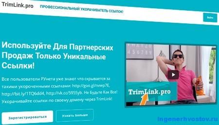 TrimLink pro – надёжное сокращение ссылок через свой домен
