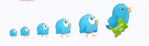 Фолловеры в твиттере