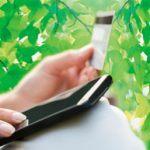 Как узнать, сколько денег на карте Сбербанка через смс