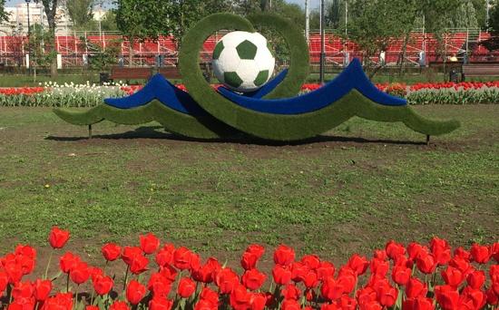 Футбольный чемпионат мира в Самаре