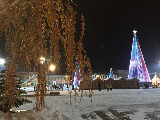 samara-novy-2019-god-zelenaya-bereza-zimoy