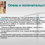 Сколько получает опекун на ребёнка в России, примеры