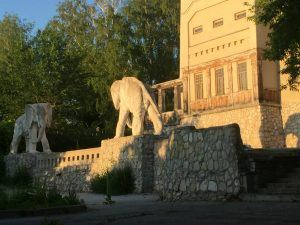 Дача со слонами, САМАРА