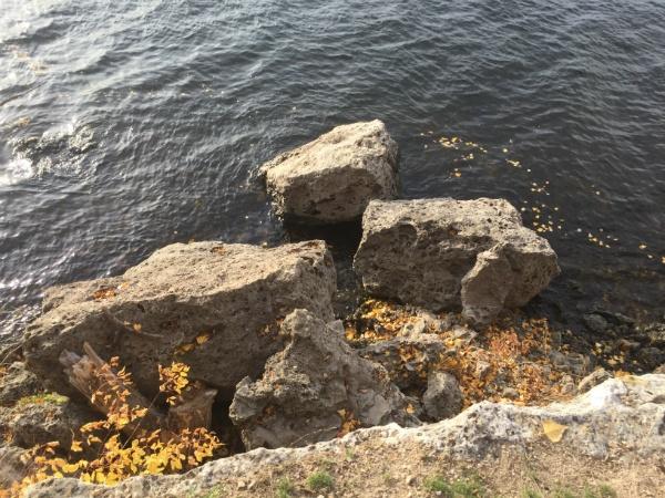 берег Волги у Самары