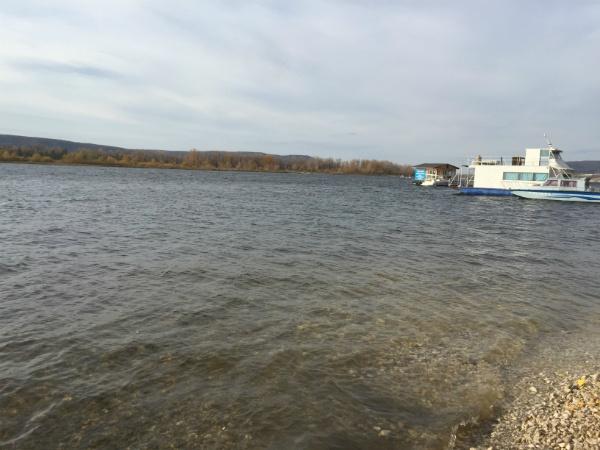 Волга у Коптева оврага