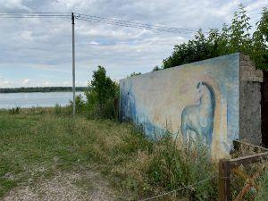картина на уличной стене в Ширяево