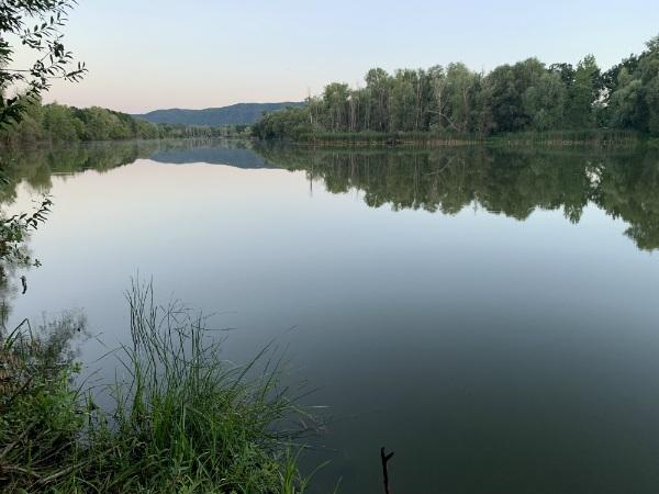 озеро Кривое, Самарская Лука, около Царевщины
