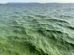 Жигулёвское море в Тольятти