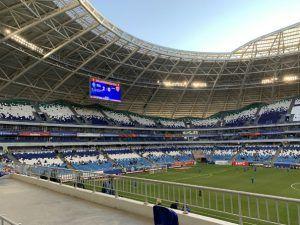 стадион Самара-Арена, поле