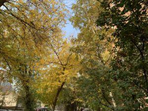 самарский октябрь-2