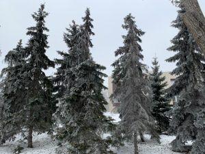 на проспекте Ленина в Самаре