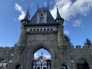 Замок Гарибальди в Самарской области-36