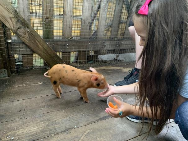 Зоопарк в Пензе-9