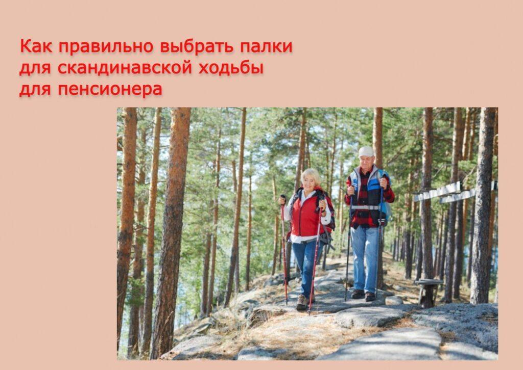 Как правильно выбрать палки для скандинавской ходьбы для пенсионера